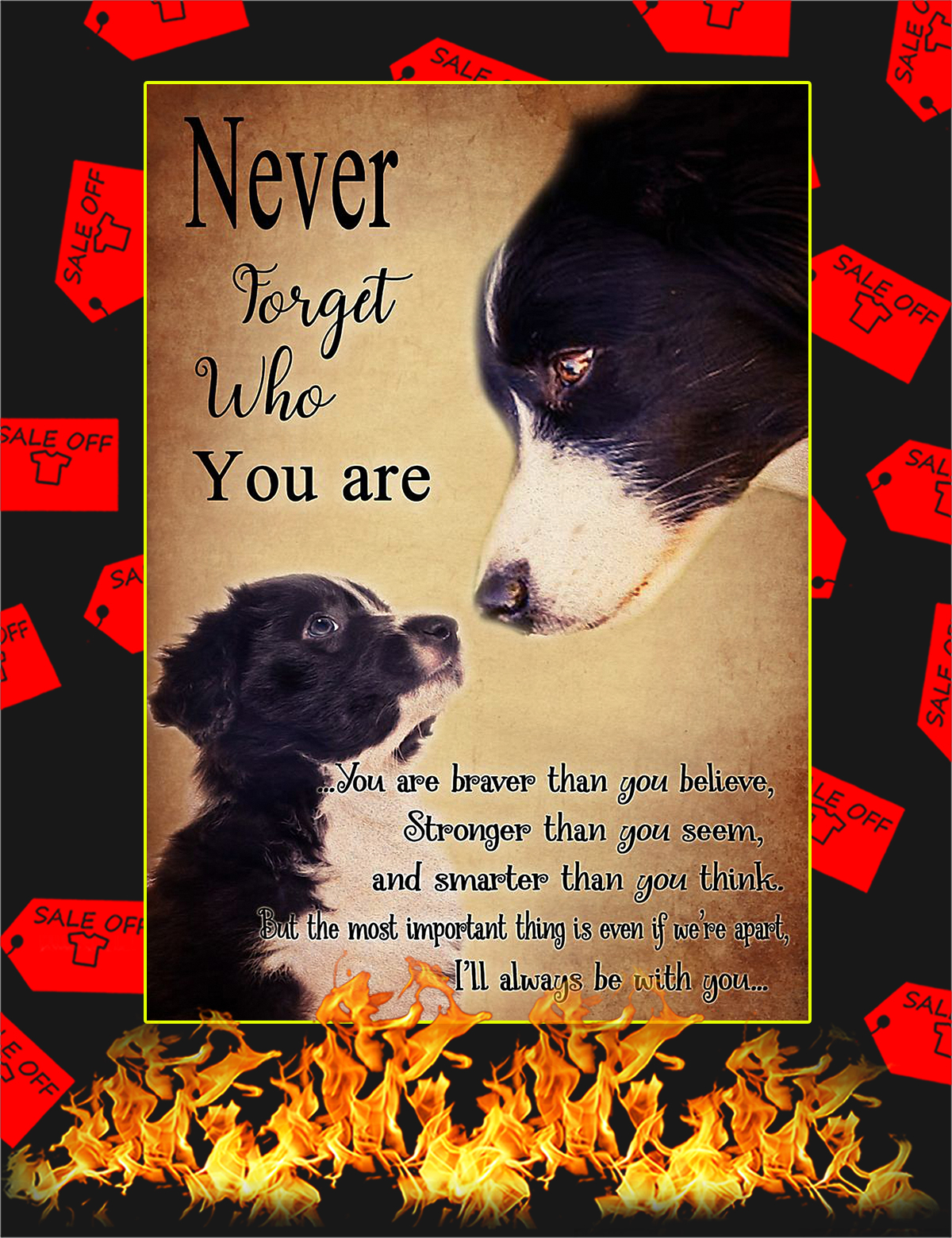 Border Collie Never forget who you are poster - A4