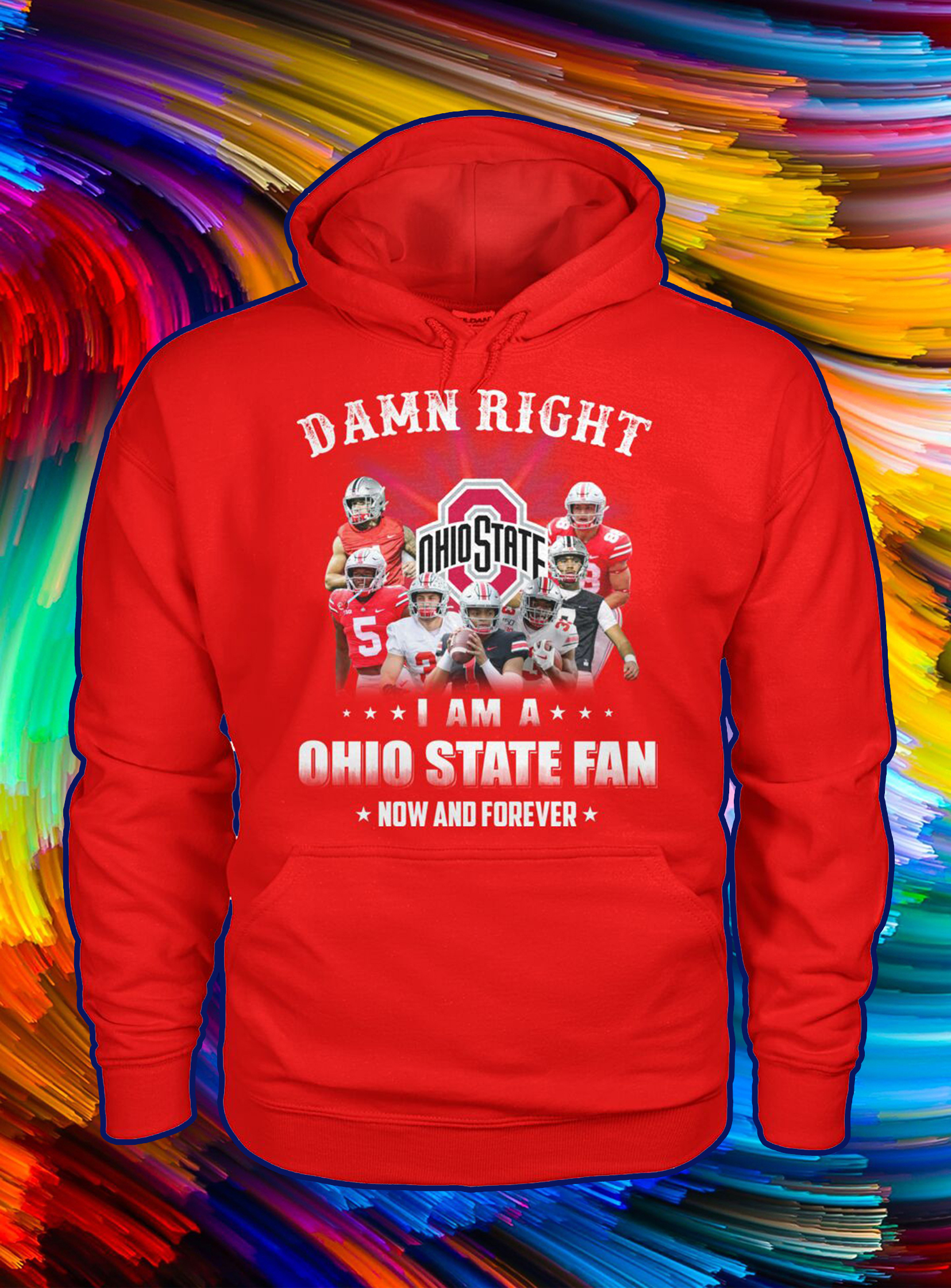 Damn right i'm a ohio state fan now and forever hoodie