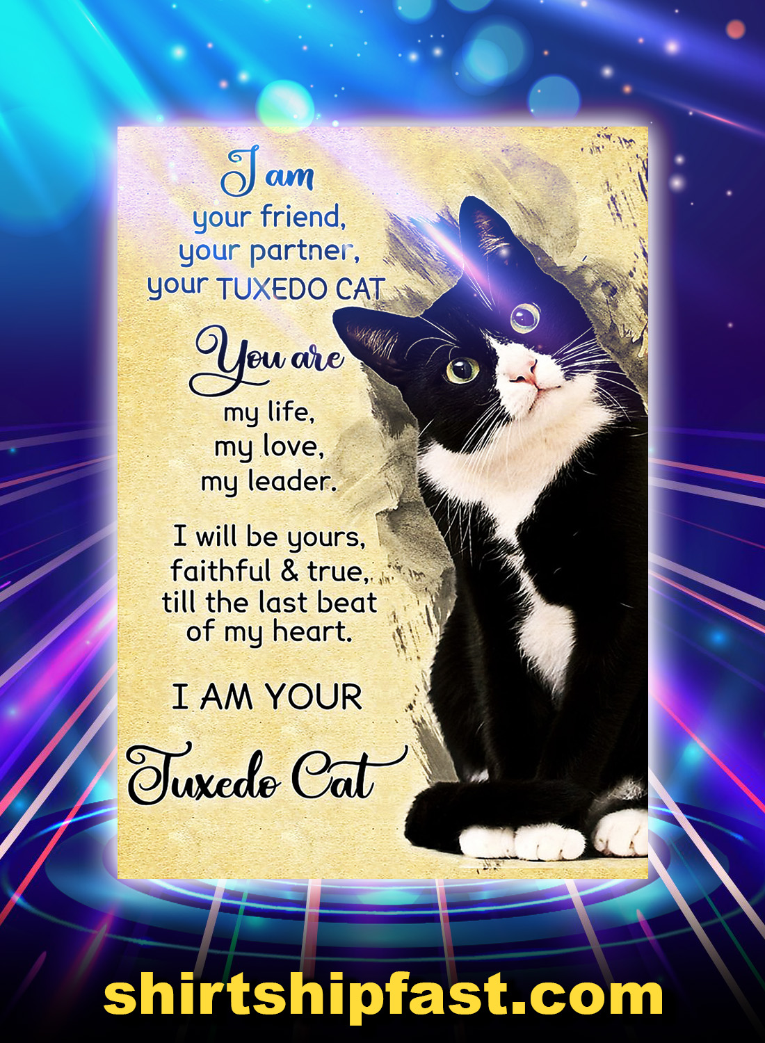 I am your tuxedo cat poster - A4