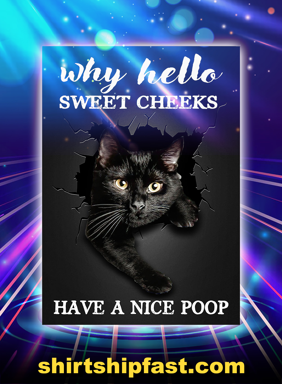 Black cat why hello sweet cheeks have a nice poop poster - A4