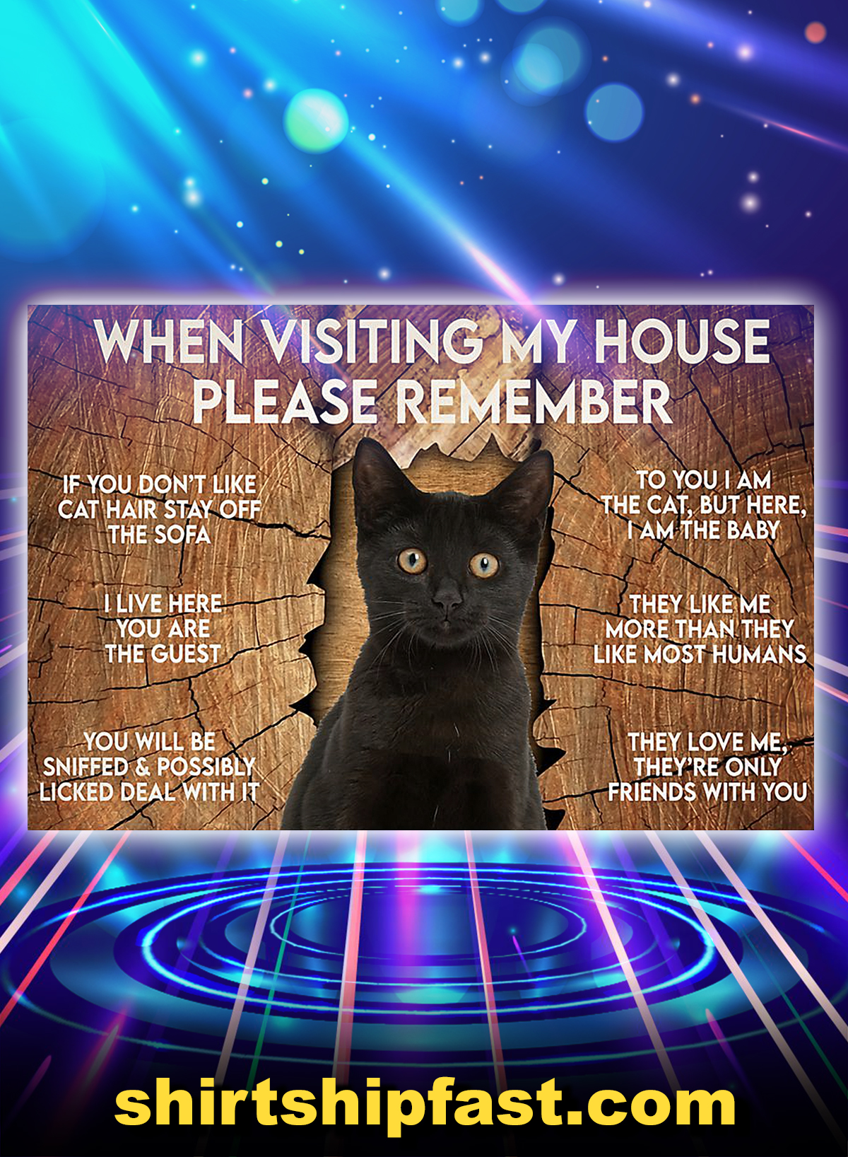 Cat when visiting my house please remember poster - A4