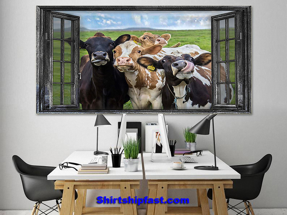 Cow window poster