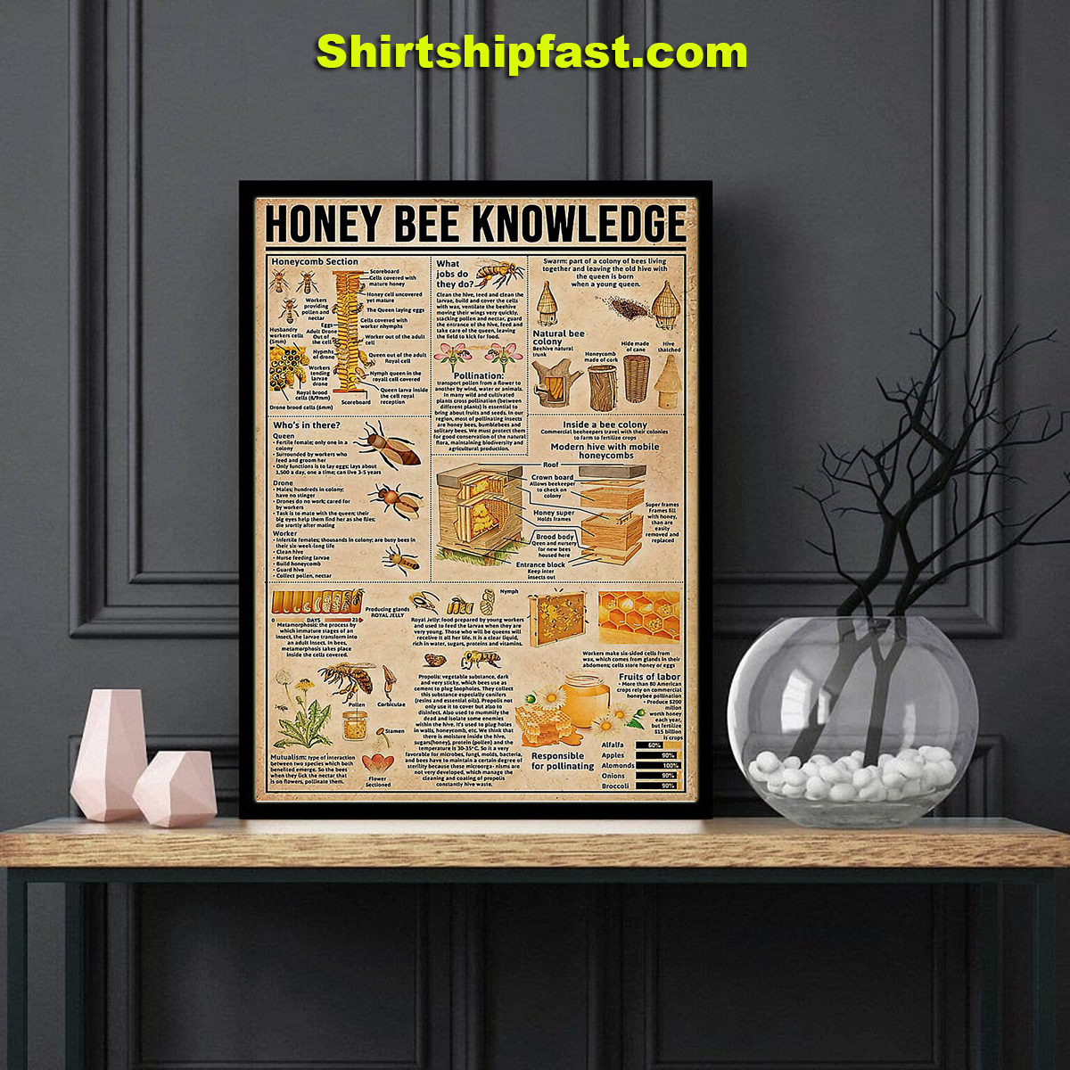 Honey bee knowledge poster - Picture 1