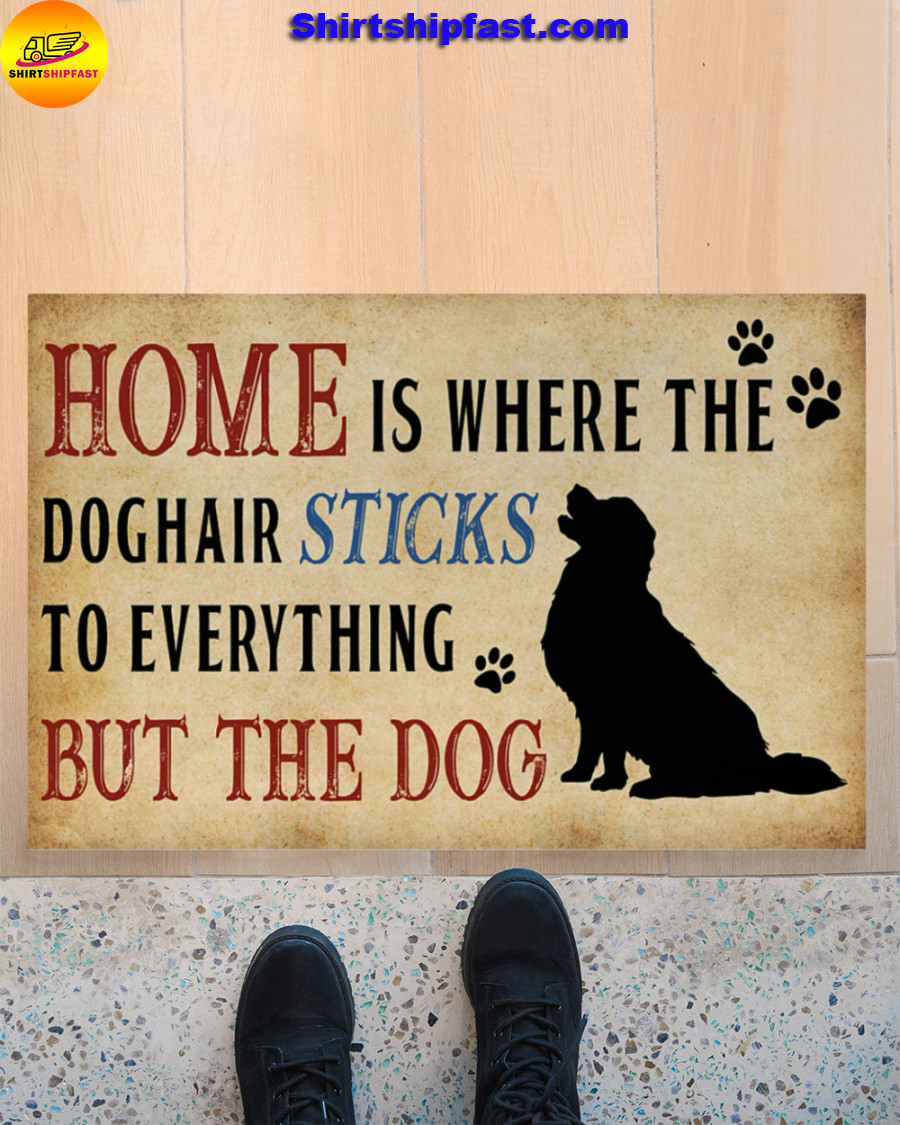 Home is where the dog hair sticks to everything but the dog doormat