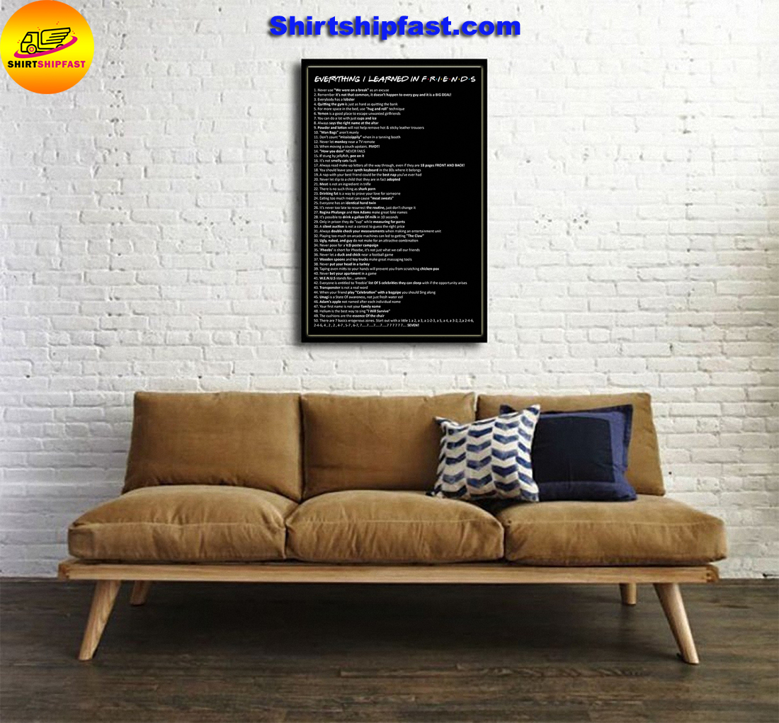Everything I learned in Friends poster - Picture 1