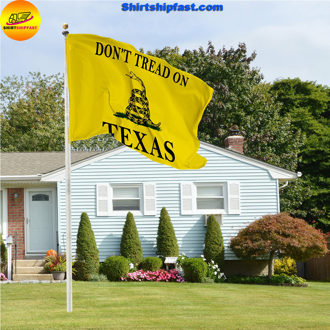 Don't tread on Texas flag - Picture 2