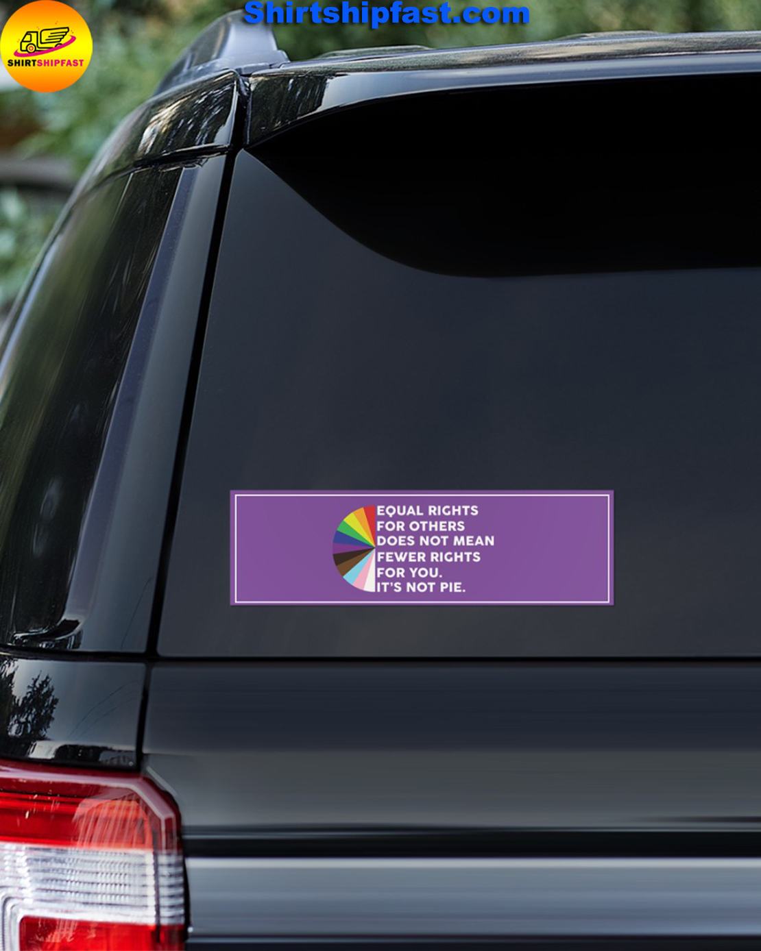 Equal rights for others does not mean fewer rights for you it's not pie bumper sticker - Picture 2