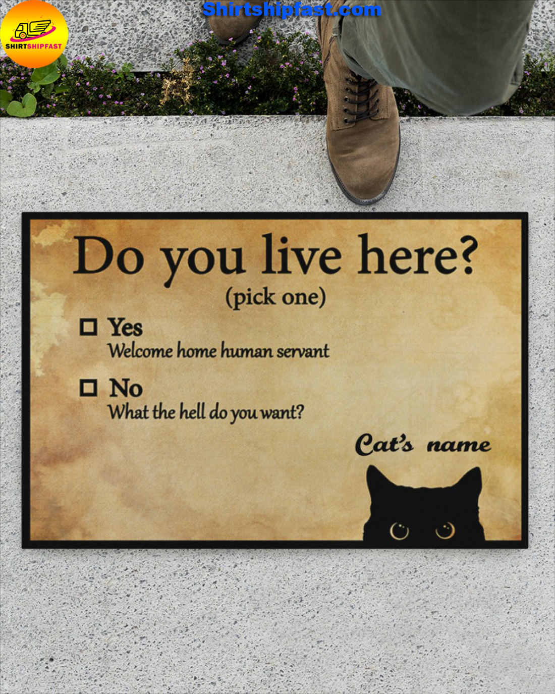Personalized name Do You Live Here Funny Cats Doormat